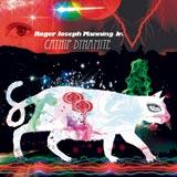 music-CD-catnip