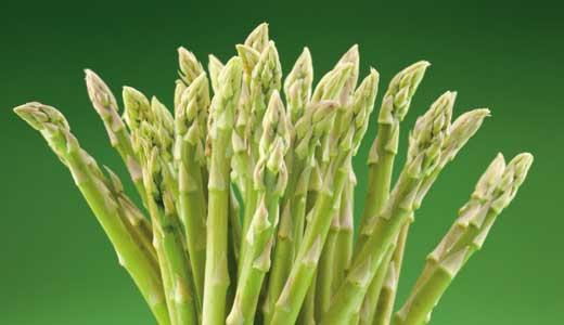dining-aspargus