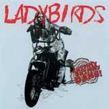 music-CD-ladybird