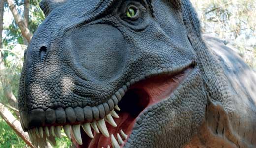 staff-picks-Tyrannosaurus-Rex-