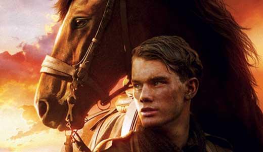 video-war-horse