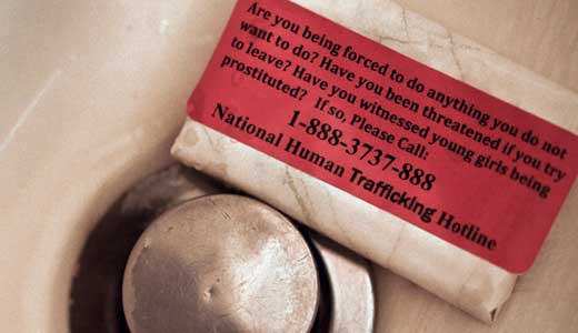 Prostitute hotline number