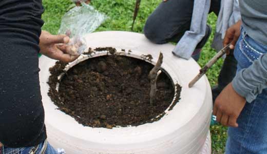 news-tire-garden