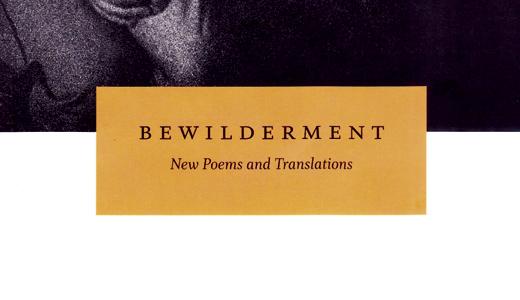 Book-Bewilderment