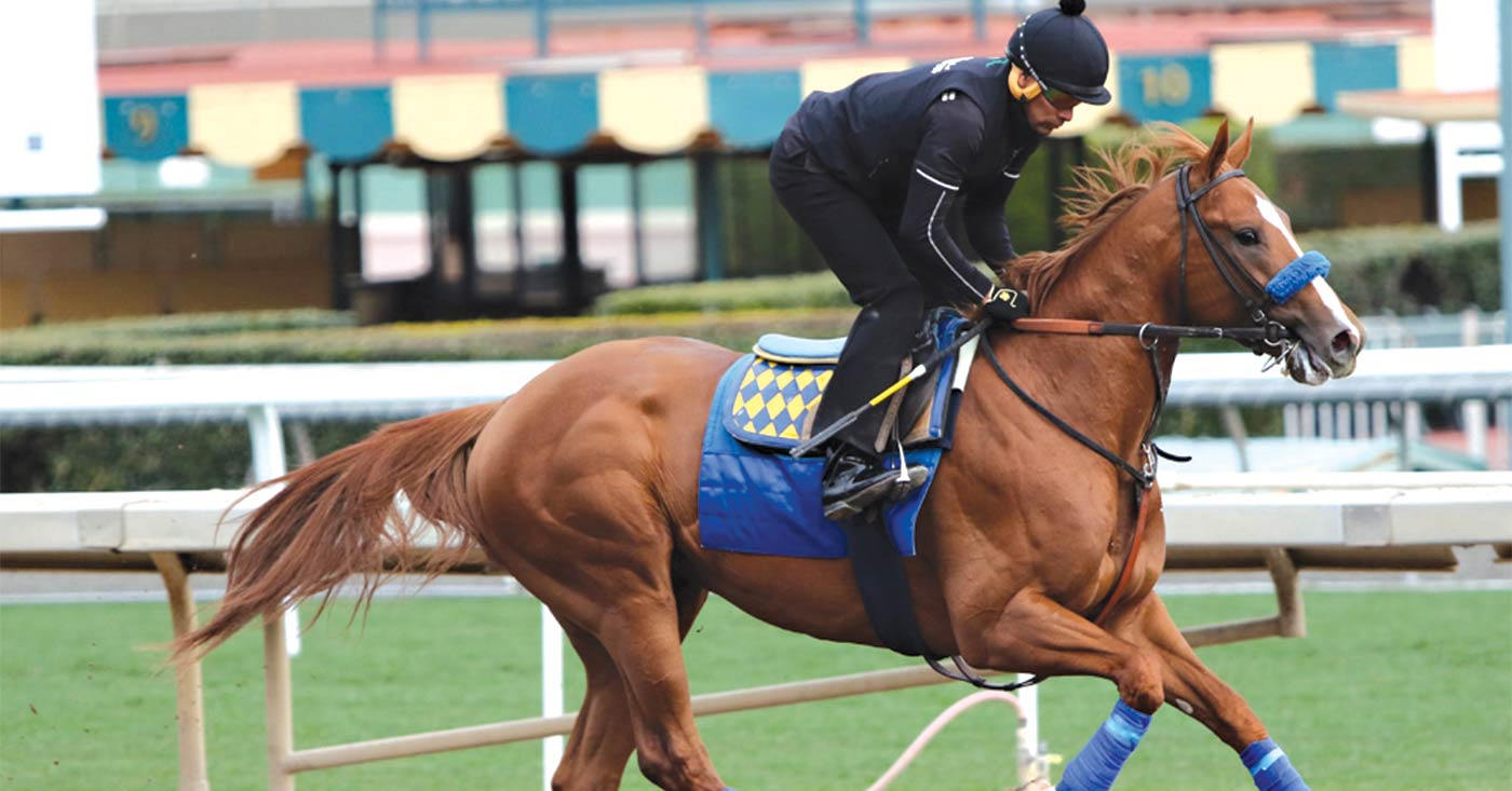How To Save Horse Racing - LEO Weekly