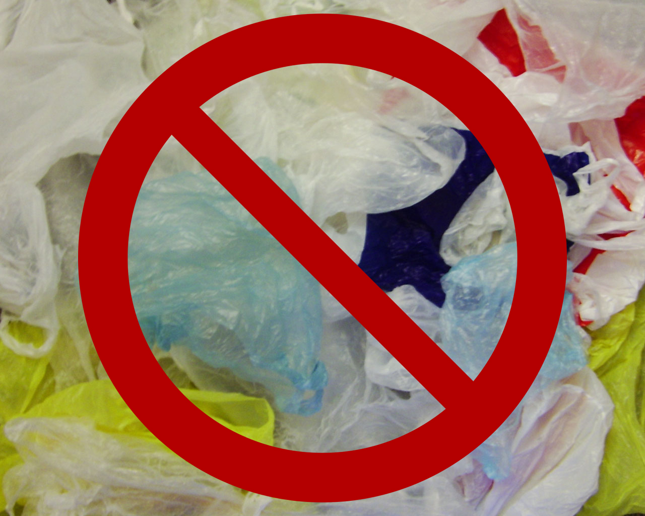 Are You Ready For Plastic Bag Ban And Is Kentucky? - LEO Weekly